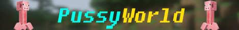 Баннер сервера Minecraft PussyWorld