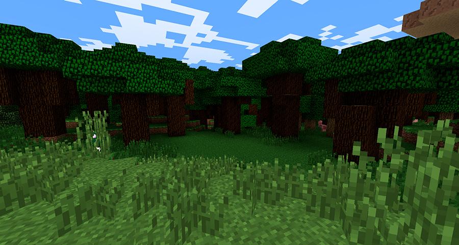 Черный лес Майнкрафт