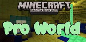 Скачать Pro World для Minecraft PE 1.2