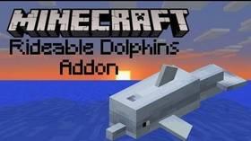 Скачать Controllable Rideable Dolphins для Minecraft PE 1.4