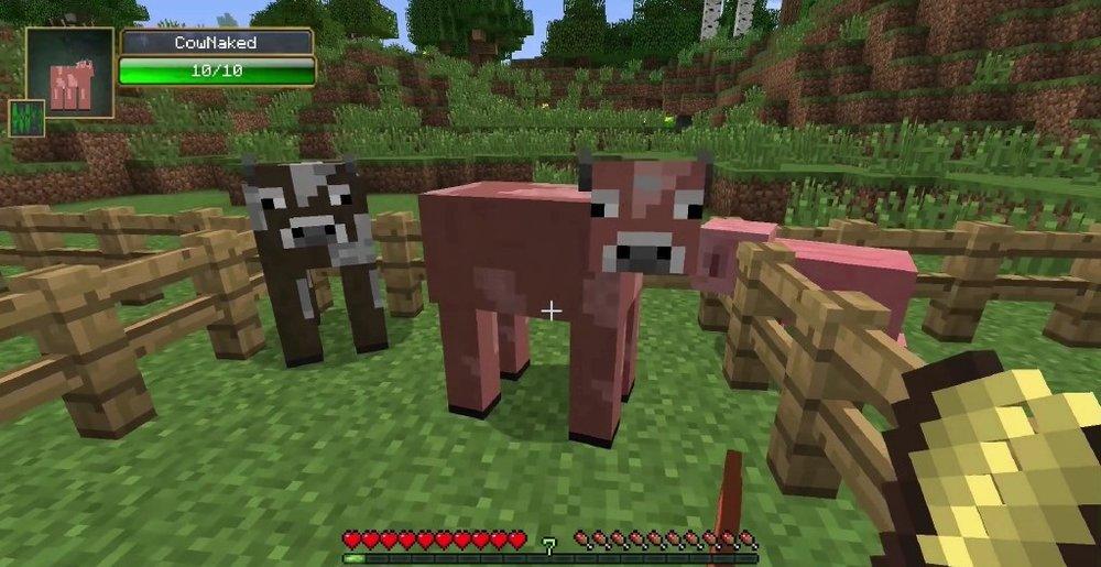 More Shearables скриншот 3
