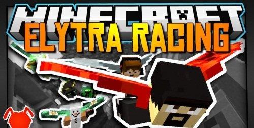 Elytra Race скриншот 1