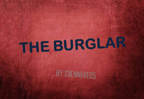 The Burglar скриншот 1