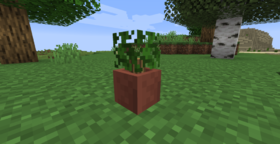 Скачать Potted Bushes для Minecraft 1.14.4